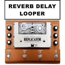 Reverb Delay Looper